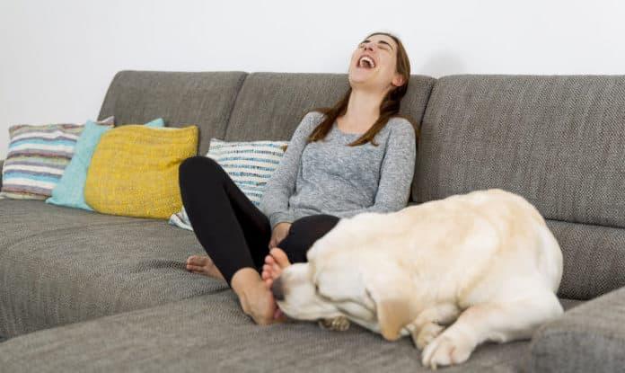 Hund leckt Füße ab