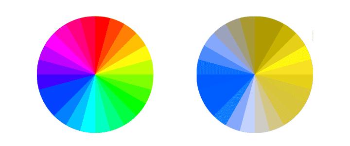 Welche Farben sehen Hunde - Farbspektrum